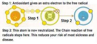 สารต้านอนุมูลอิสระให้อิเลคตรอน